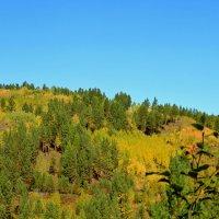 Осень на Олхинском плато :: Roman PETROV