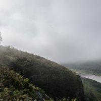 Туман :: Павел Савин