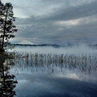 Карелия, река  Писта :: Валерий Толмачев