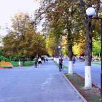 Сентябрь в парке :: Владимир Болдырев