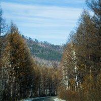 Забайкальские дороги :: Марина Кириллова