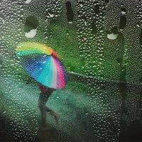 Про дождливый август... :: Вера Катан
