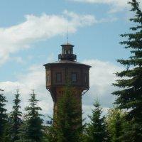 Старая водонапорная башня :: Вера Щукина