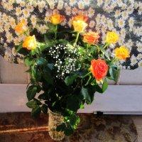 Розы на фоне ромашек :: татьяна