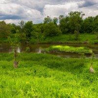 Утро на реке :: Владимир Брагилевский