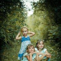 Три сестры :: Tanya Petrosyan
