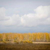 Осень :: Мария Ларионова