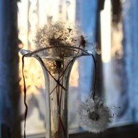 Сон о сне  на склоне дня :: Ирина Сивовол