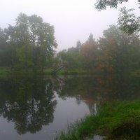 Туман Кузьминке :: Сапсан