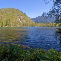 Тёплые озёра. Озеро Тёплое :: Анатолий Иргл