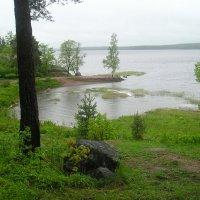 Берег озера :: Дмитрий Солоненко