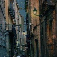 ночной город :: Тамара Бердыева
