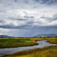 Осенние дожди. :: юрий Амосов