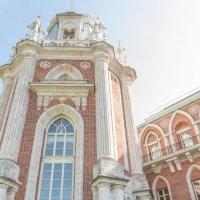 невеста на фоне дворца :: Сергей Звягинцев