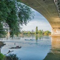 А под мостом... :: Николай Саржанов