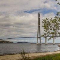 Мост, остров Русский, Владивосток :: Эдуард Куклин