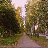 Золотая осень . :: Мила Бовкун
