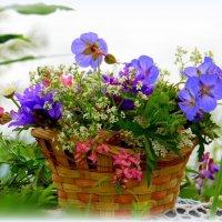 Полевые цветы соберу я в корзинку. :: nadyasilyuk Вознюк