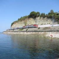 Морской пейзаж с поездом :: Виталий Купченко