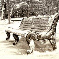 одинокая скамейка :: Ирина Корнеева
