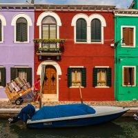 Разноцветная жизнь... :: Виктор Льготин