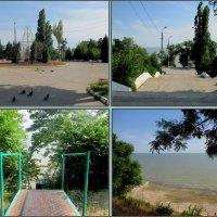 Таганрог. В Приморском парке :: Нина Бутко