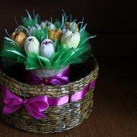 Вечные тюльпаны :: Алёна ...