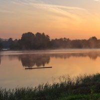 В утреннем тумане :: Galina