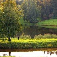 Павловский парк, сентябрь :: Ирина Румянцева