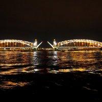 Питер разводит мосты :: Софья Борисова