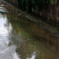Стылой осени дождь моросящий... :: Валерия  Полещикова