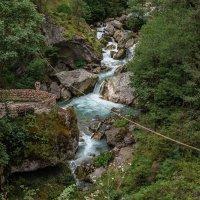 Река Гега, Абхазия :: Юрий Захаров