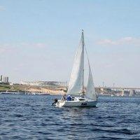 Яхта :: Елена Савельева