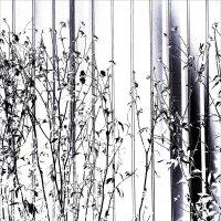 Цветы запоздалые. :: Валерия  Полещикова