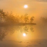 Утро всегда бывает доброе! :: Фёдор. Лашков