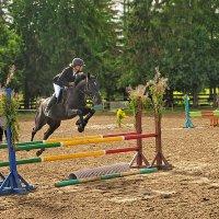 тренировки на  конном... :: Георгий Никонов