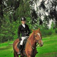 тренировка на конном :: Георгий Никонов