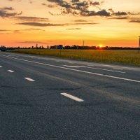 дальняя дорога :: cfysx