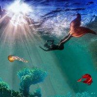 Чудеса Красного моря :: irina Schwarzer