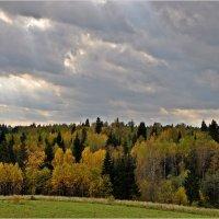 ...Осенью небо с проседью... :: Aquarius - Сергей