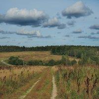 Среди осенних полей :: Александр