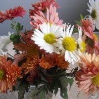 Мои любимые осенние цветы :: Галина