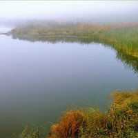 Утро осеннее, туманное... :: Александр Никитинский