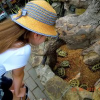 Юный натуралист :: Лилия П.