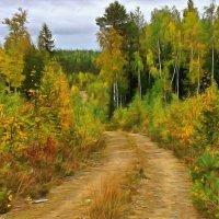 осенний лес :: Анжела Пасечник