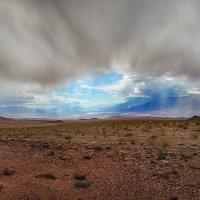 непогода :: svabboy photo