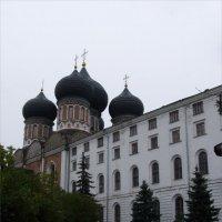 Покровский собор с корпусом богадельней :: Анна Воробьева