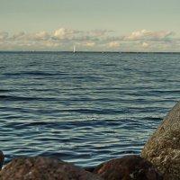 Камешки и горизонт :: Владимир Гилясев