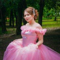 Розовая сказка :: Олеся Романова