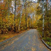Осень. :: Виктор Шпаков
